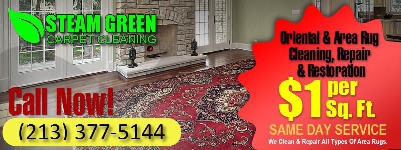 04 oriental rug cleaning